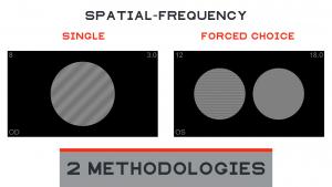 Chart2020 Contrast Sensitivity Methodologies